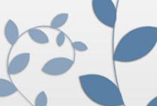 Interactive Website Design, Website Development and Custom Integration for Deluxe