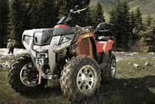 Information architecture, website design and website development for Polaris